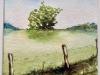 akvarell-2